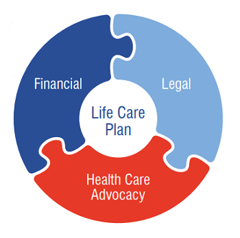 Components of a Life Care Plan include finances, legal, and heath care advocacy