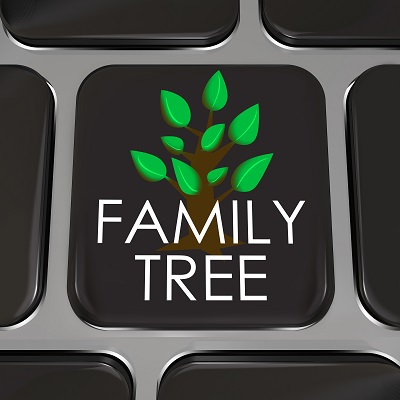 Online genealogy website search