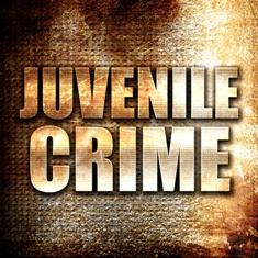 There Are Many Offenses Juveniles May Be Charged With in Virginia