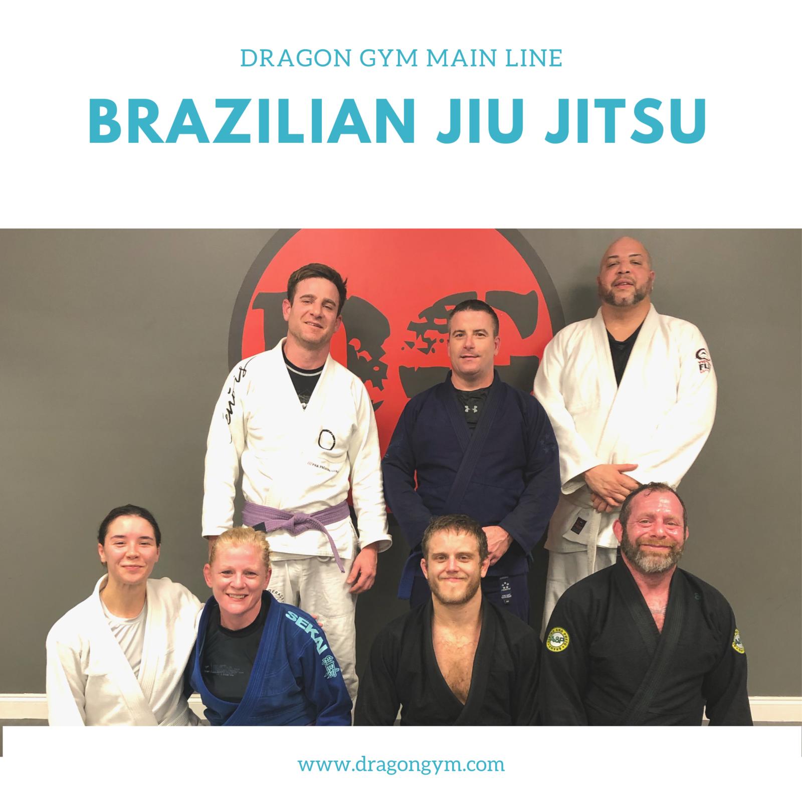 Lionville Brazilian Jiu Jitsu