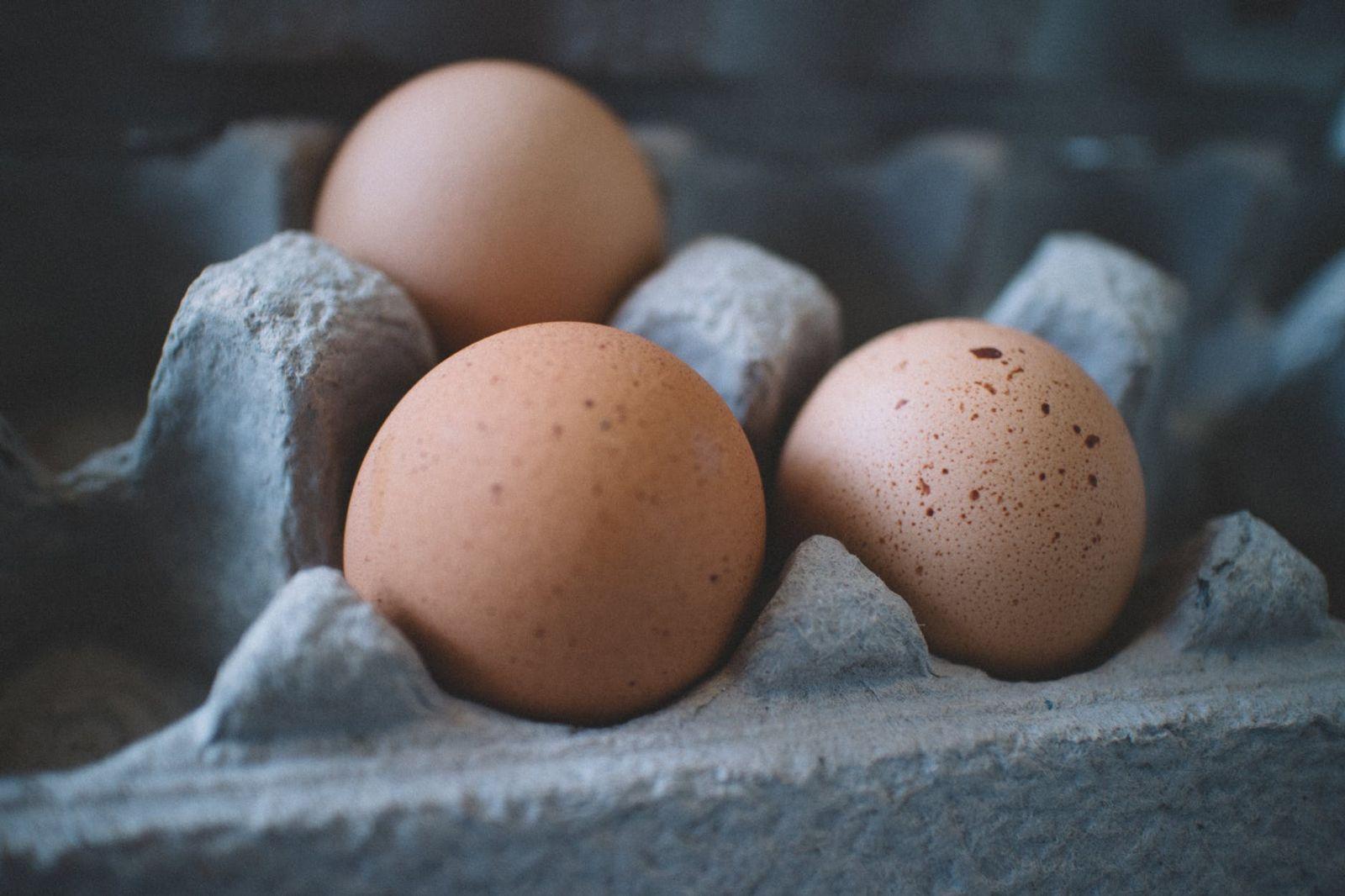 Health Breakfast Ideas for Children