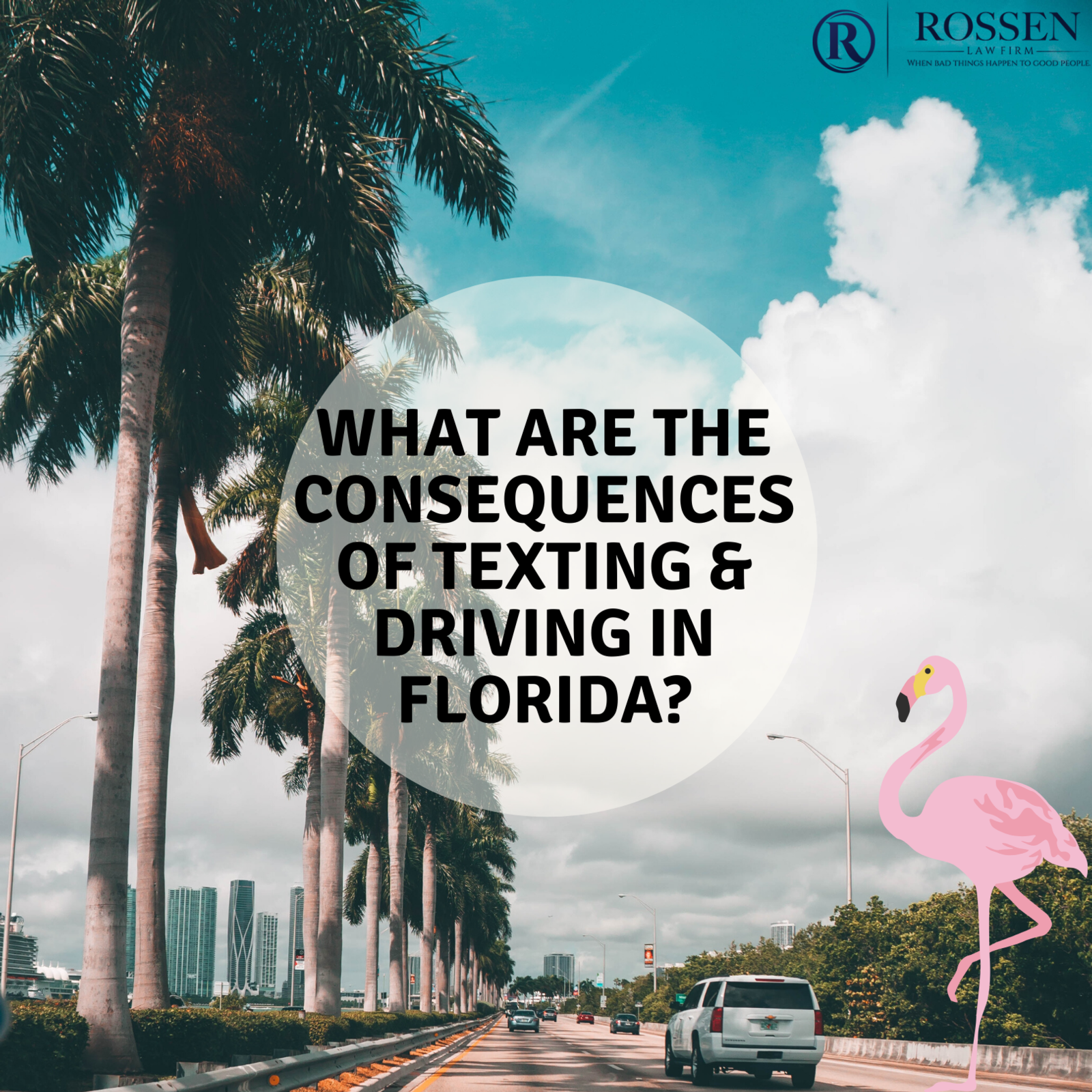 What are the consequences of texting & driving in Florida?