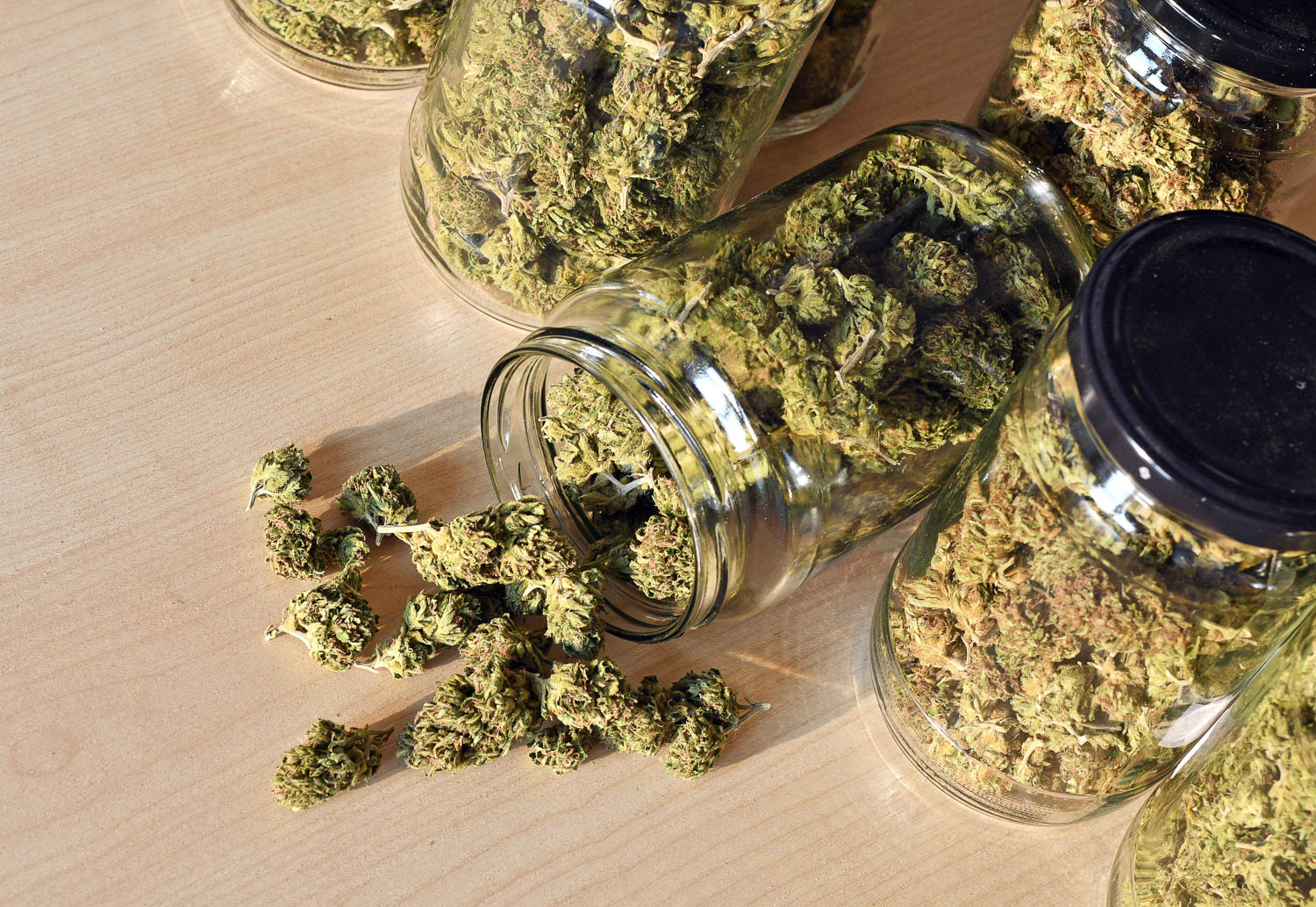 Dried Weed or Cannabis is in glass jars with lids, one jar is spilled out. Weed possession can be a felony in Florida