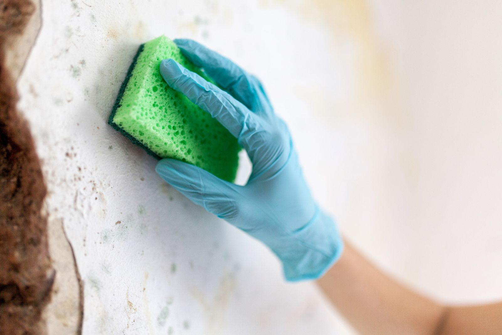 Mold damages the wall of a fort lauderdale home due to water damage. Hire a Fort Lauderdale home insurance attorney if you find mold in your home.