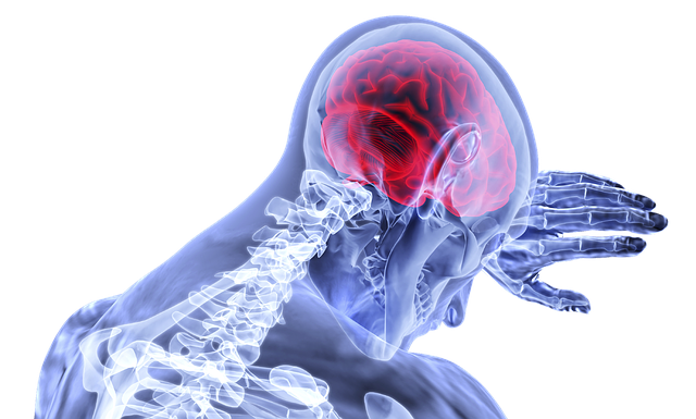 brain injury Kansas City lawyer