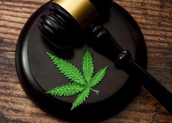 Fort Lauderdale Drug Defense Lawyer