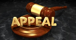 judges gavel and word appeal