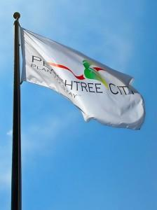 Flag of Peachtree City Georgia Van Sant Law