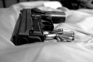 gun Van Sant Law