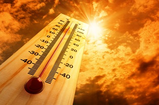 heat illnesses and workers' comp