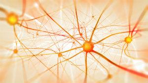 Damage to nerve cells