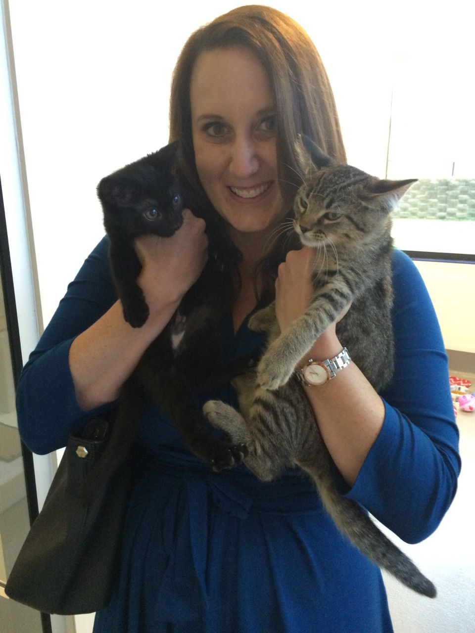 SPCA of Texas Volunteer Attorney