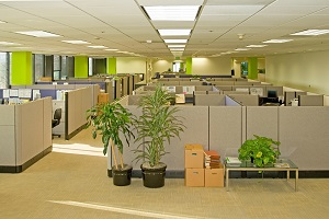 An office environment may cause serious occupational diseases