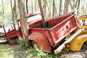 Pickup truck in a stand of trees after an accident