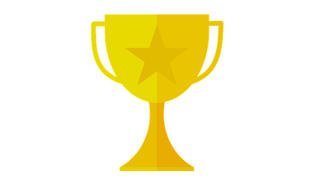 What kind of awards does your attorney have?