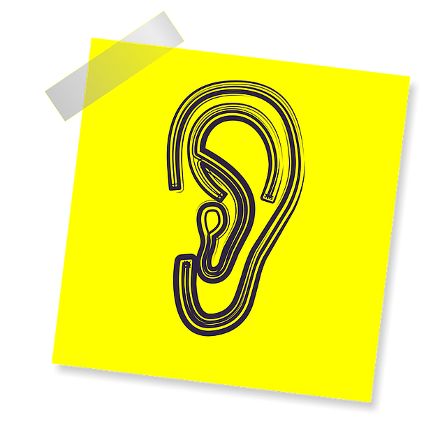 Insurance company requested objective evidence of tinnitus when no such tests exist.