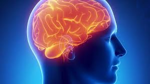 Stroke Caused From A Michigan Auto Accident