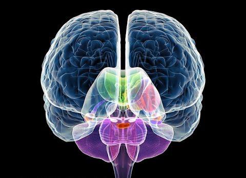 michigan motorcycle brain injuries