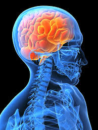 michigan brain injury symptoms