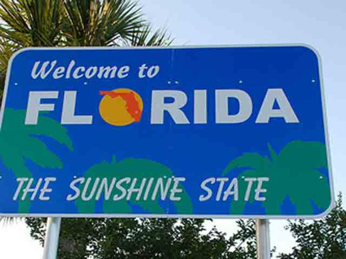 Michigan residents in florida car accidents
