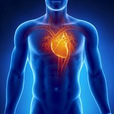 michigan heart attack misdiagnosis lawsuits