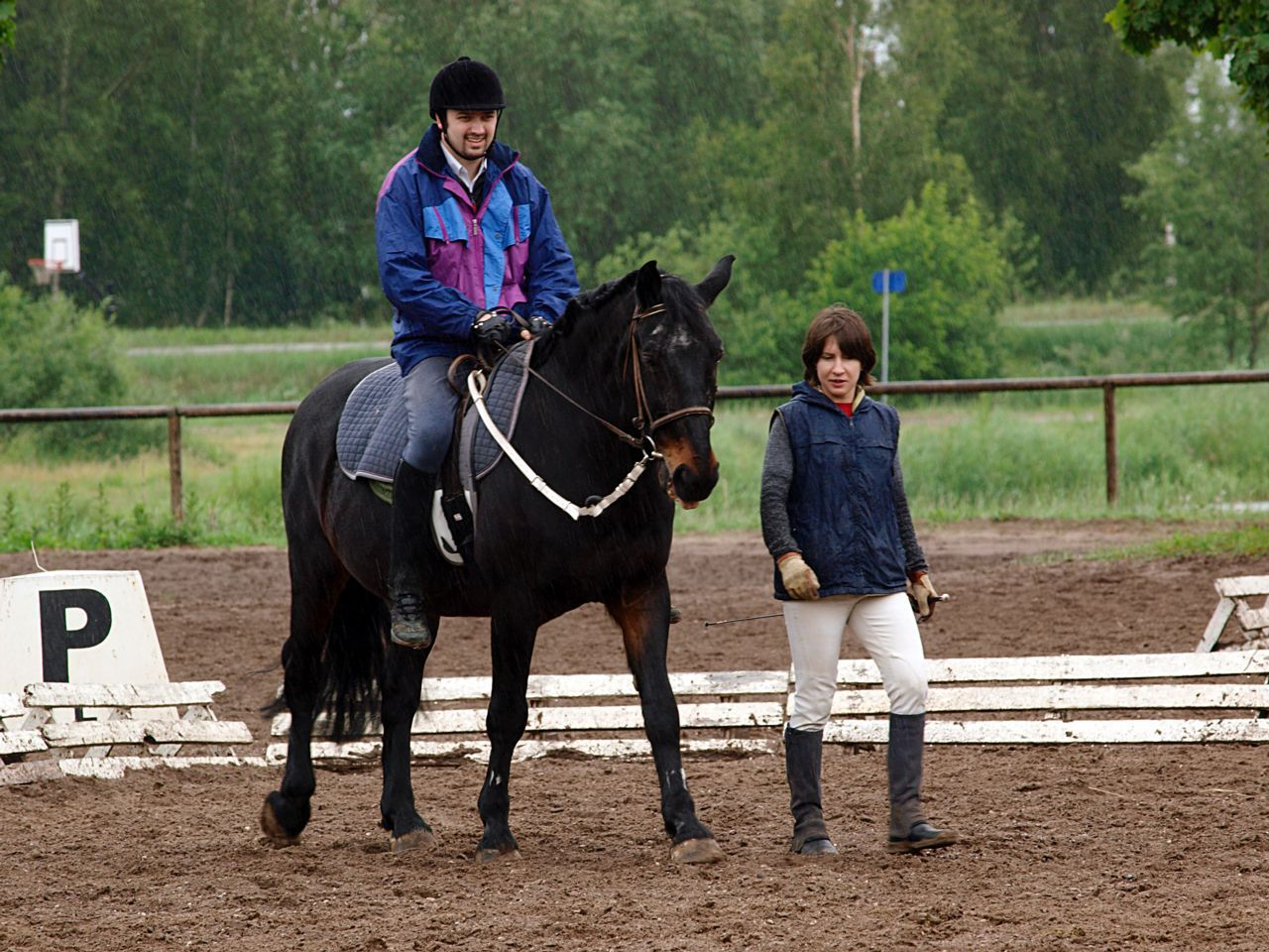 Michigan equestrian and horse back riding injury lawyers
