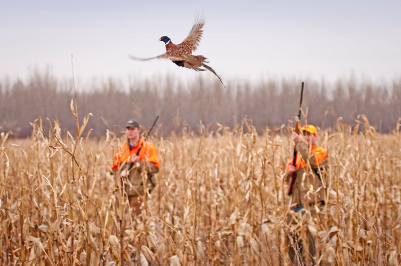 Michigan Hunting Accident Lawyer