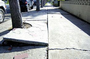 Michigan Defective Sidewalk Injury Lawyers