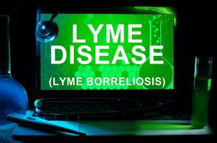 Lyme Disease Diagnosis on a Tablet