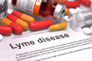 Lyme Disease Fact Sheet With Various Medications