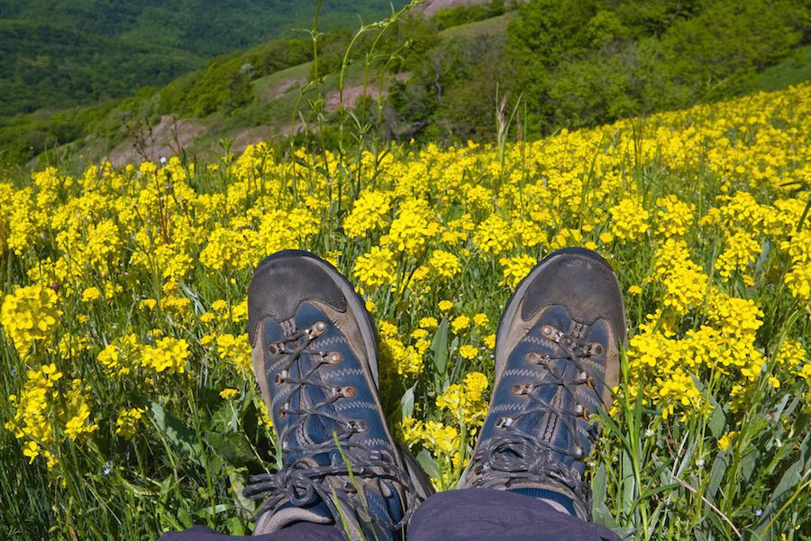 Feet on mountain meadow
