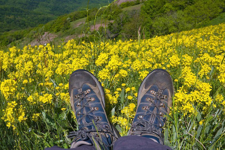 Feet on mountain meadow