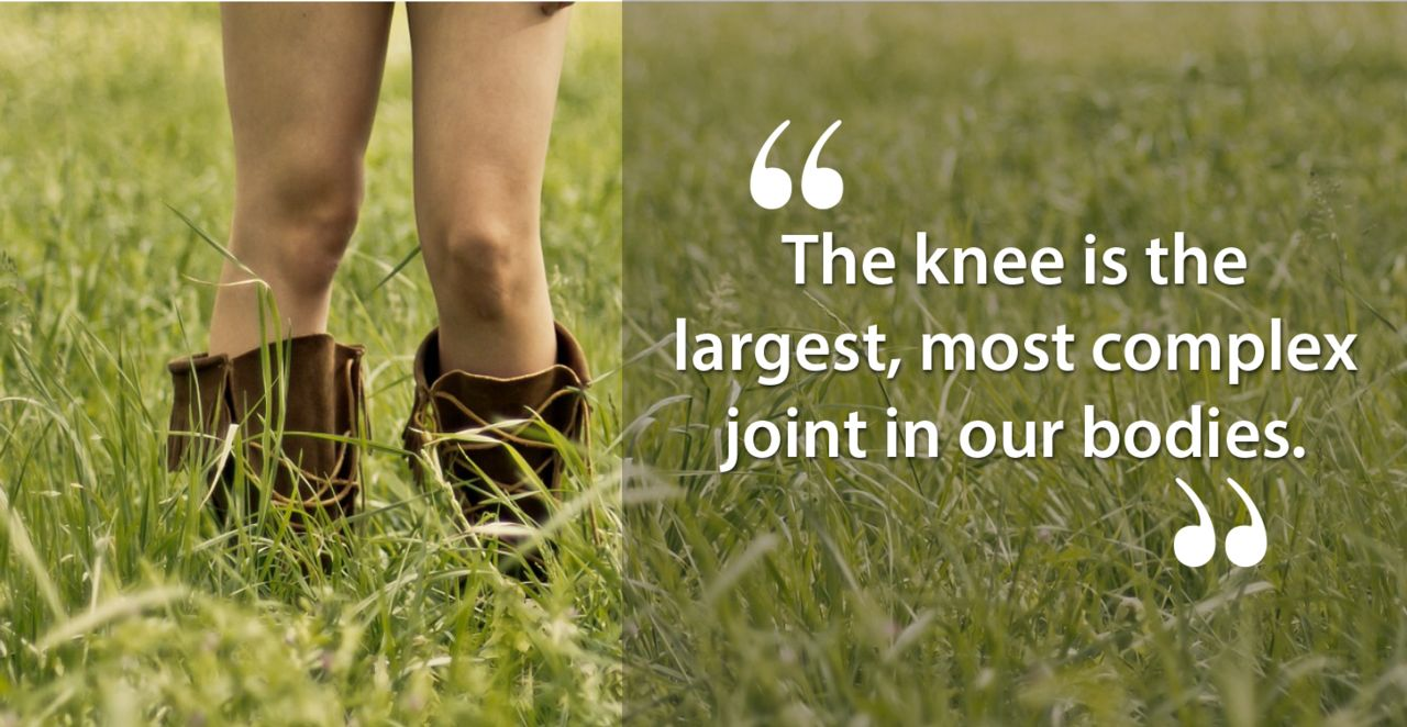 The knee is the largest most complex joint in our bodies