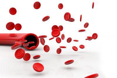 Blood Circulation in Diabetics