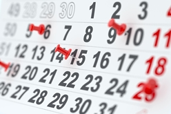 Close-Up View of a Calendar With Red Pins