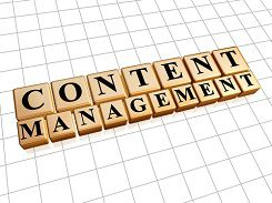 A robust content management system effectively sustains your online presence.