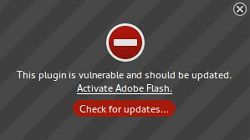 Is Adobe Flash putting your computer's security at risk?