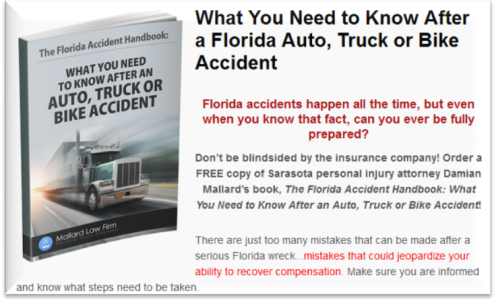The Florida Accident Handbook by Damian Mallard