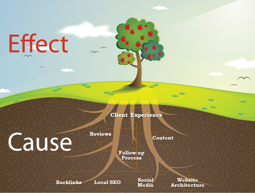 Why Client Experience Matters and What Marketing Effects Your Business Tree Analogy