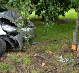 wrongful death in a fatal car accident