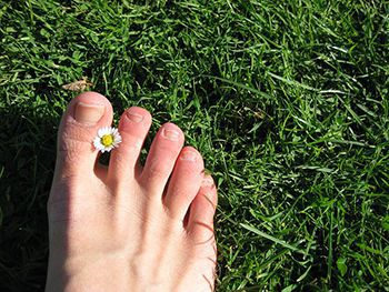 Foot in Grass with Daisy