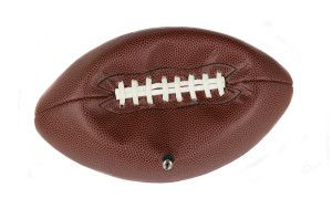 NFL deflate-gate and employment law credibility