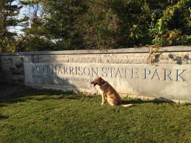 Emma the dog in front of the sign to Fort Harrison State Park
