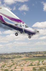 small plane crash liability