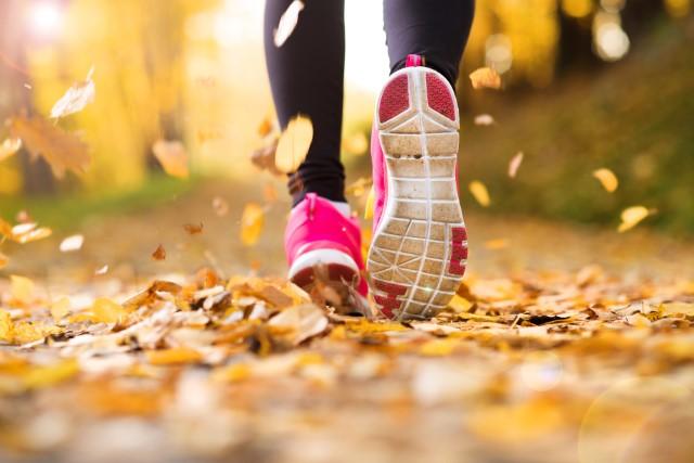 Fall Running
