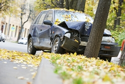 Safe driving in the fall season