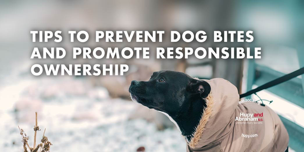 Responsible dog ownership is key to preventing dog bites
