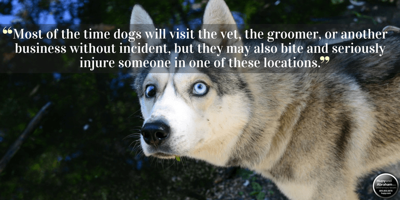 Most of the time the dog's owner will be responsible for your attack or bite injuries