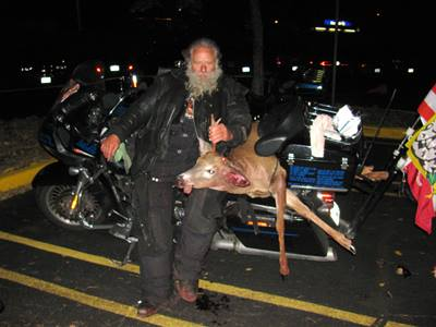Man on motorcycle holding dead deer from accident