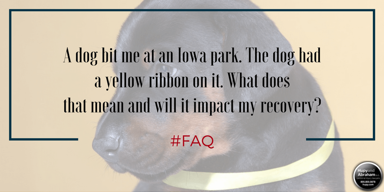 A dog's owner is not absolved of liability if the animal wears a warning yellow ribbon